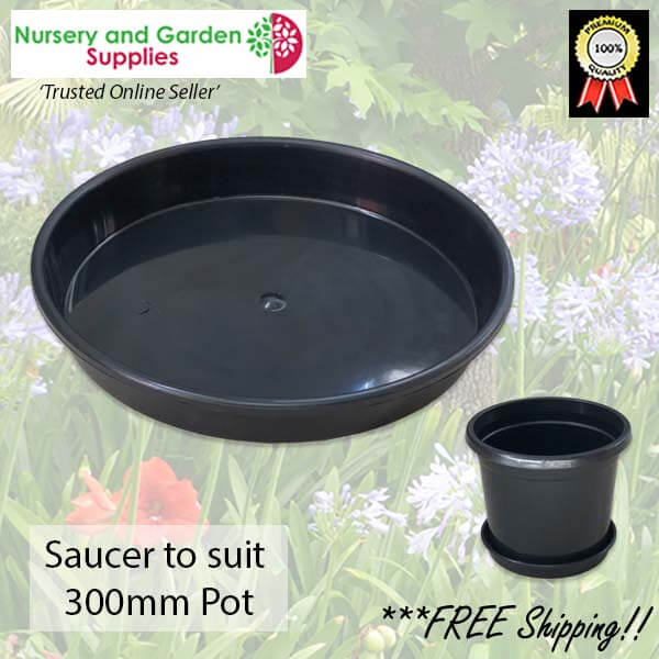 Saucer to suit 300mm Pot - for more info go to nurseryandgardensupplies.com.au