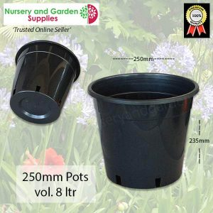 250mm Plant Pot - for more info go to nurseryandgardensupplies.com.au