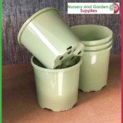 100mm-Plastic-Pot-Slimline-Sage-4