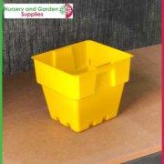 100mm-Square-Punnet-Pot-Yellow-3