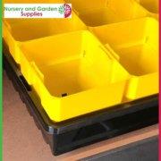 100mm-Square-Punnet-Pot-Yellow-6