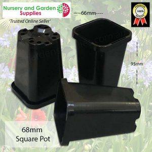68mm Square Pot Black