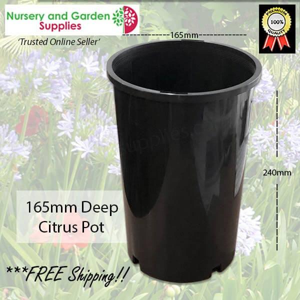 165mm Citrus Pot Deep - for more info go to nurseryandgardensupplies.com.au