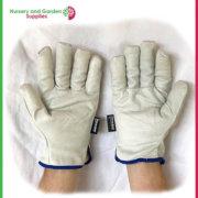 GRL144-Antarctic-Glove-2