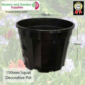 150mm Squat Pot Decorative Black