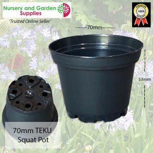 70mm Squat TEKU Pot Black