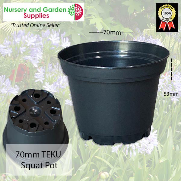 70mm Squat TEKU Pot Black