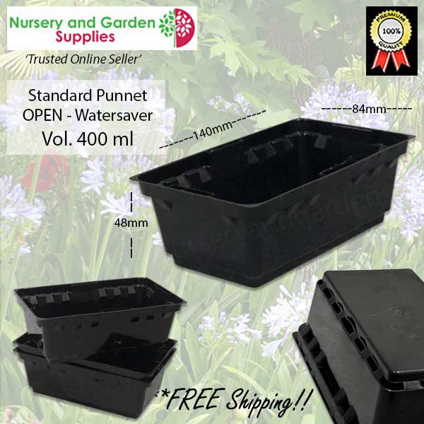 Open Seedling Punnet STANDARD