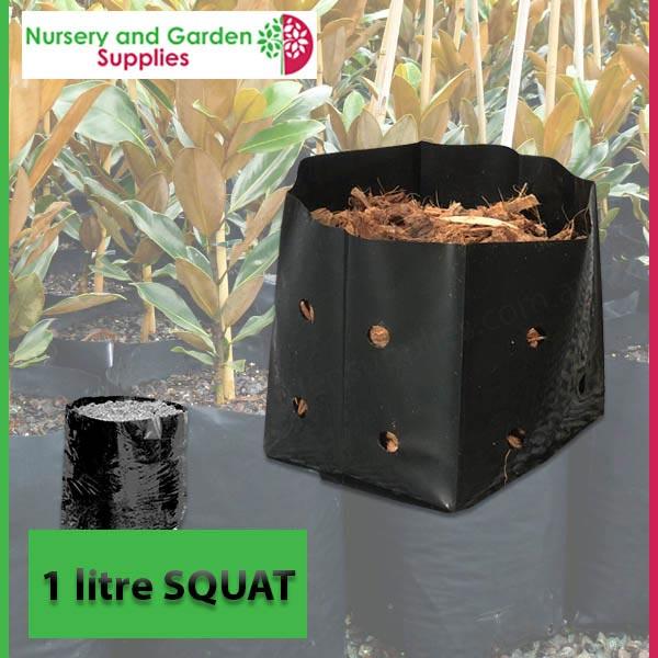1 litre Squat Poly Planter Bags